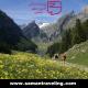 تور تابستانی سوئیس